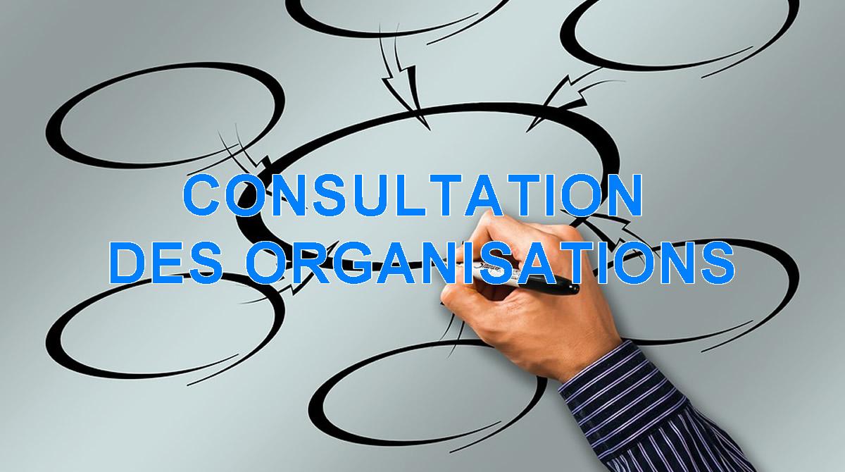 CONSULTATION DES ORGANISATIONS